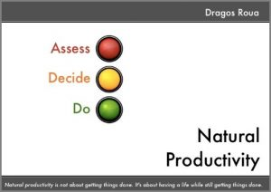 Natural Productivity: Assess, Decide, Do by Dragos Roua