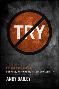 No Try Only Do: Building A Business On Purpose, Alignment, And Accountability by Andy Bailey